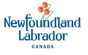 Organization logo of Government of Newfoundland and Labrador (GNL) - Public Procurement Agency